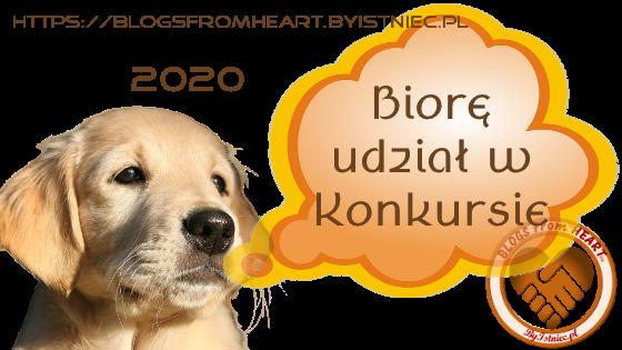 BanerKonkursowy2020-b